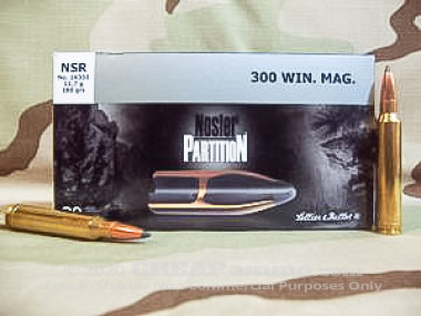 Sellier & Bellot - Nosler Partition - 180 Grain 300 Winchester Magnum Ammo - 20 Rounds